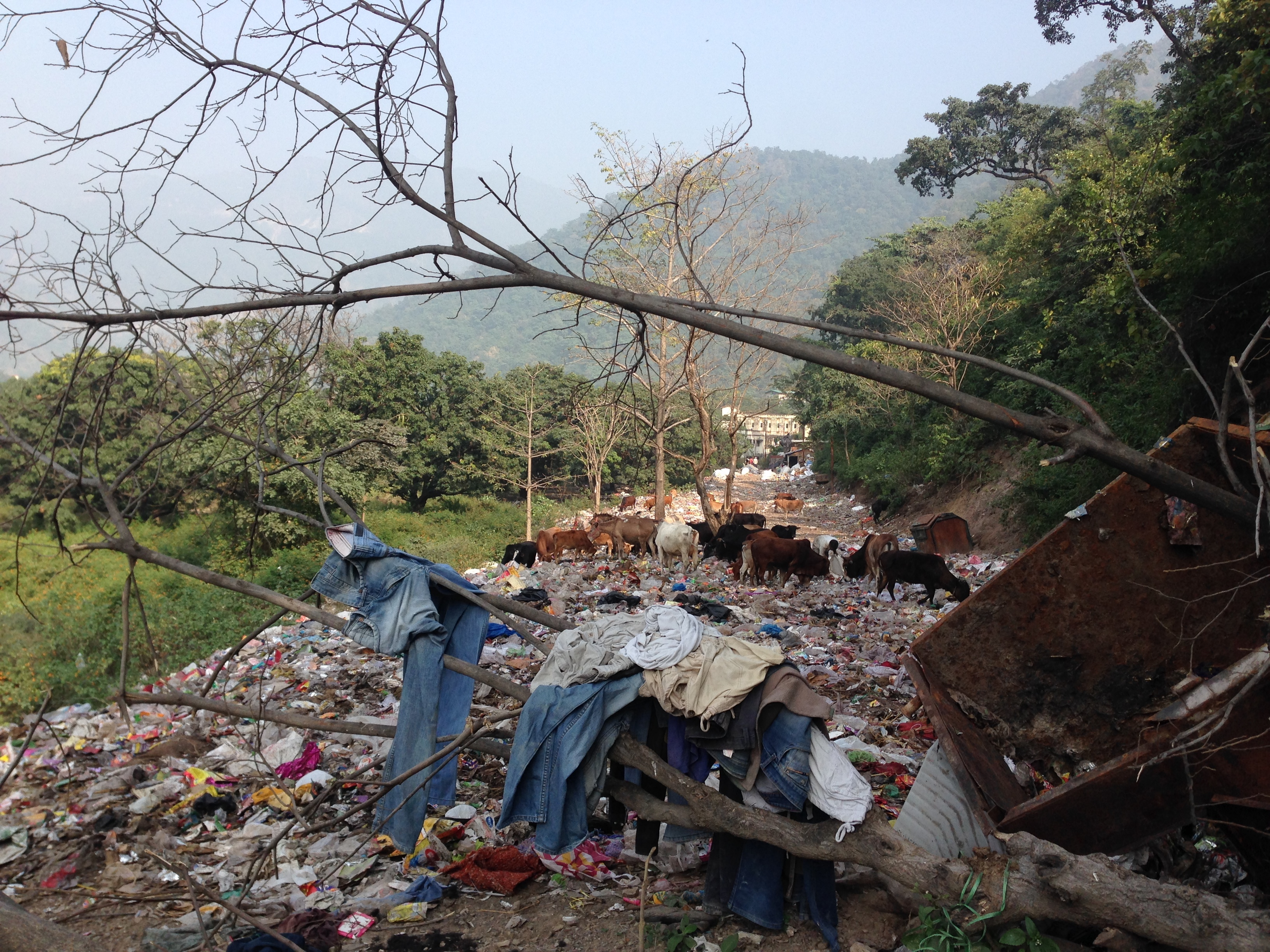 Garbage situation in India, Rishikesh