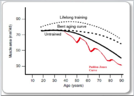 Aging curve physiological headroom and effects on strength training