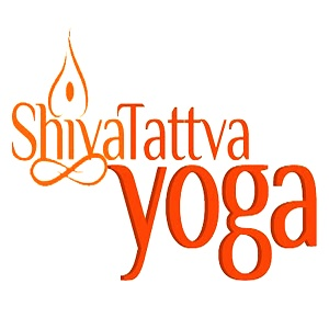 Yoga studio Shiva Tattva Yoga School Rishikesh