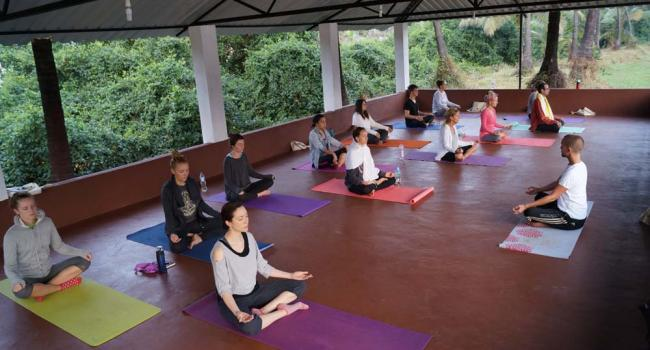 Йога мероприятие 200 Hours YTT in Goa | Siddhi Yoga [node:field_workplace:entity:field_workplace_city:0:entity]