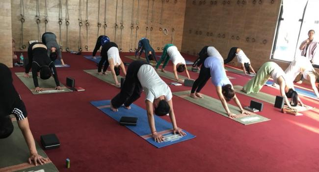 Yoga event 200 hour Yoga Teacher Training Course  Rishikesh
